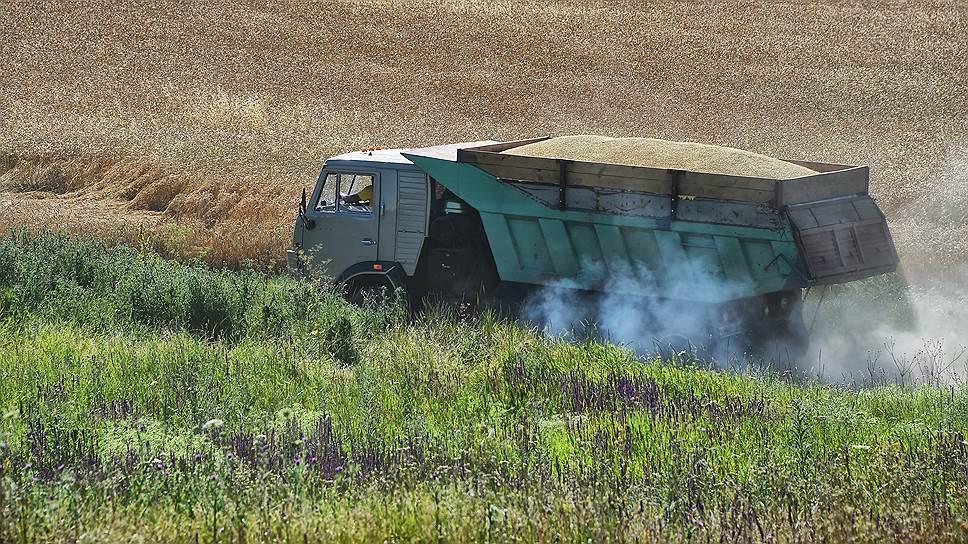 Как железнодорожники пробуют обойтись без зерновозов