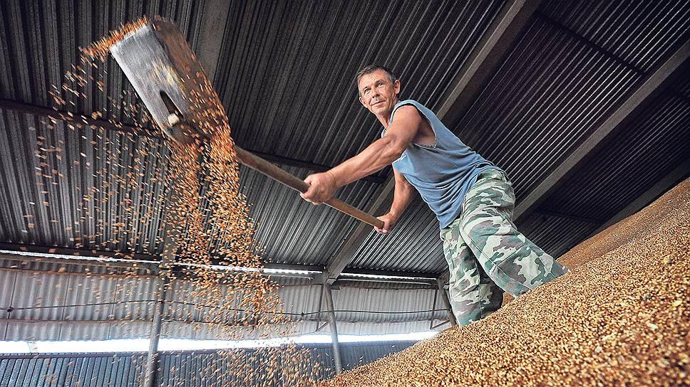 По прогнозам ФАО ООН и ОЭСР, спрос на зерновые не одолеет предложения