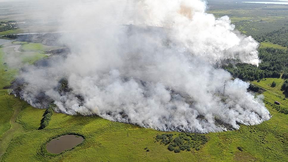 По площади природных возгораний нынешний год догоняет худшие
