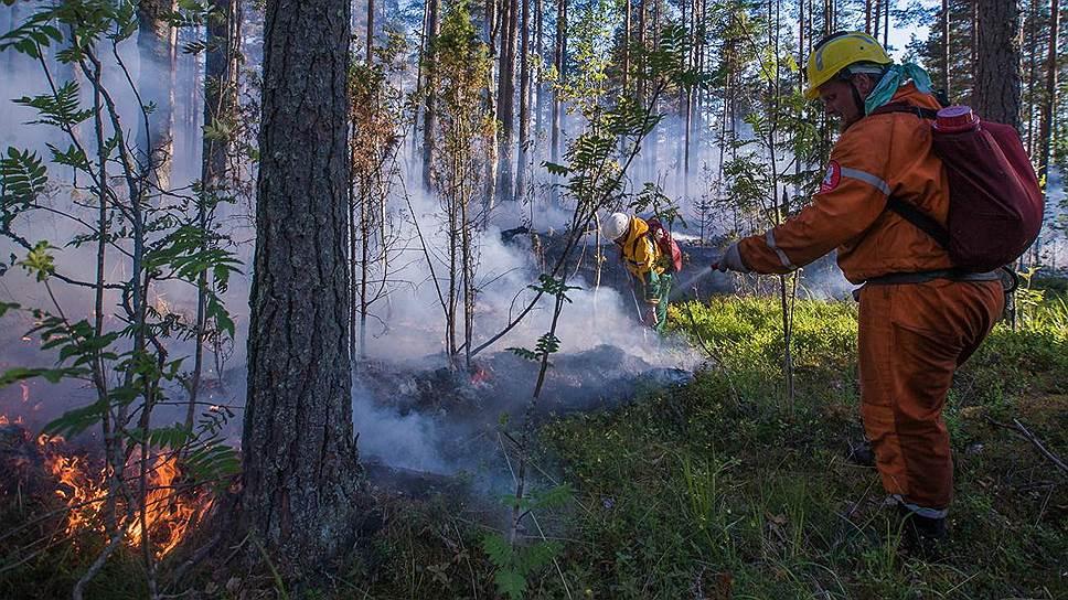 Экипировке и средствам тушения добровольцев завидуют даже государственные пожарные