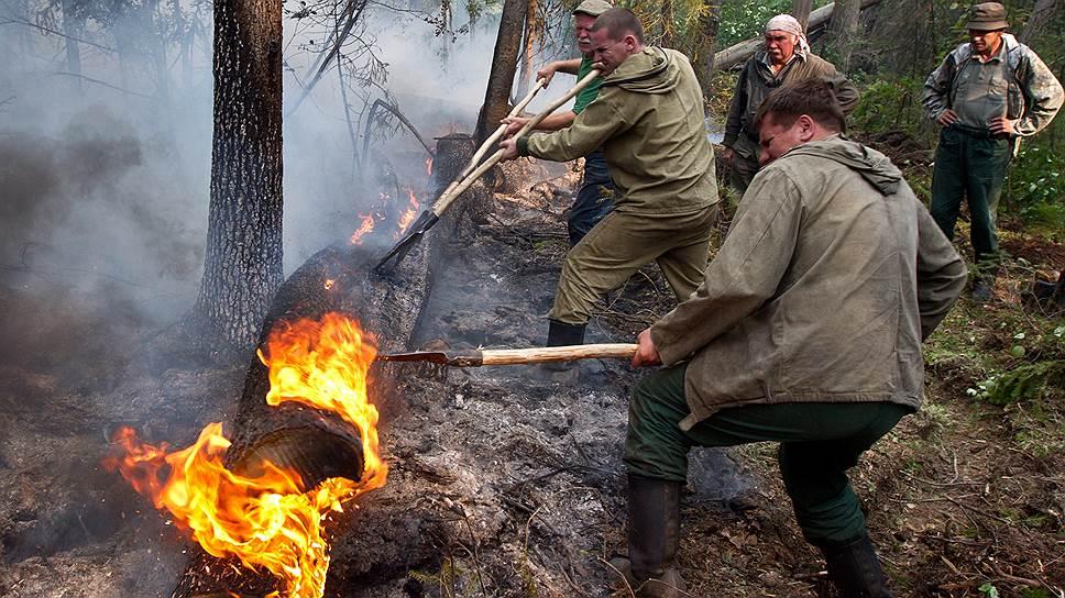 Как из-за аномальной жары огонь возникает на территориях, где его давно не было