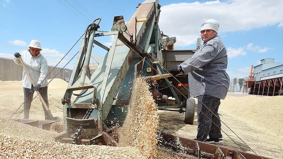 Как экспорт пшеницы можно будет регулировать с помощью проверок