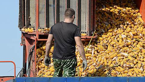 Ливийцы приехали за зерном // Триполи надеется на активизацию экономических связей с Москвой