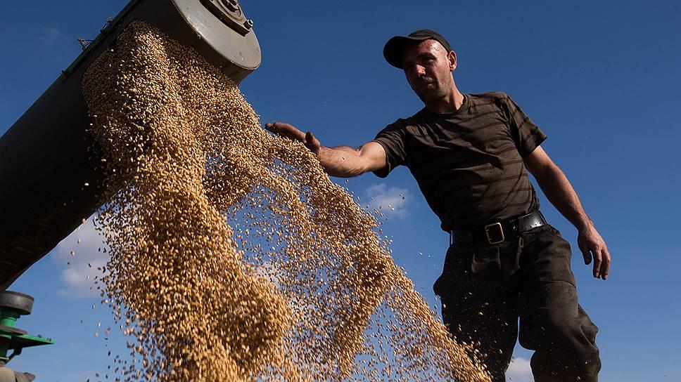 Как чиновники подняли цену зерна