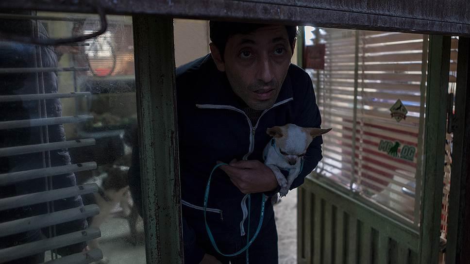 Герой Марчелло Фонте, собачий парикмахер, не дает в обиду своих клиентов