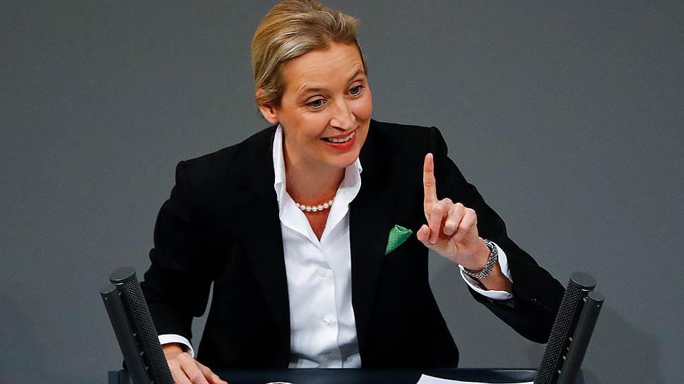 Немецкие СМИ расследуют нелегальное финансирование «Альтернативы для Германии»