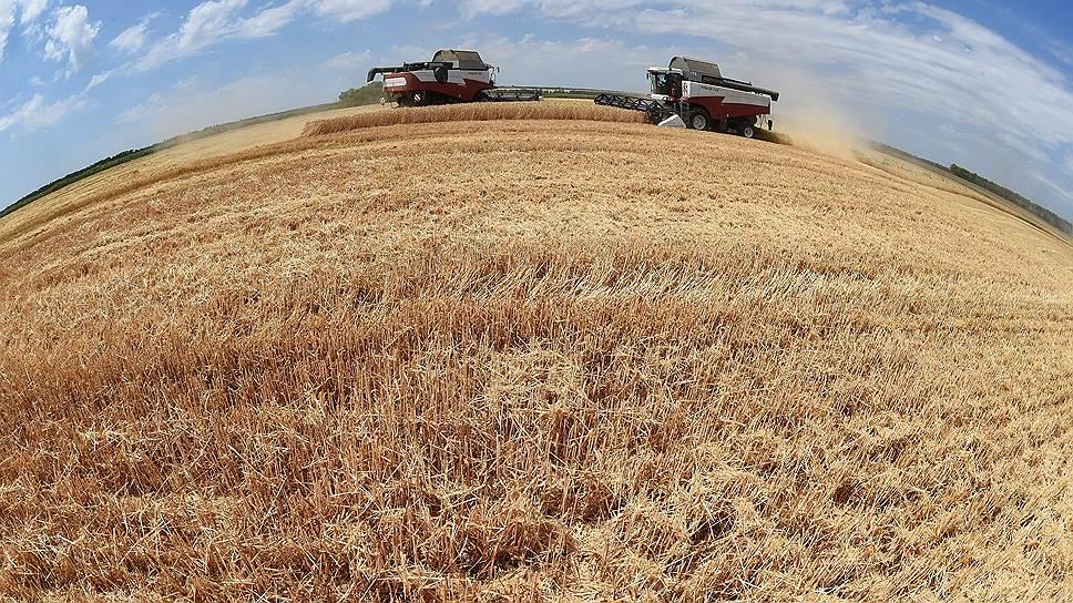Экспортеров зерна просят о замедлении поставок