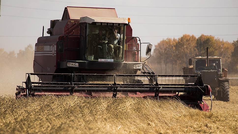Цены на пшеницу обновили многолетние максимумы