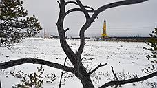 «Газпром нефть» разбавила зрелые активы