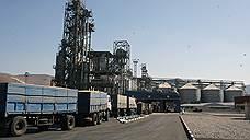 Экспортеры зерна считают убытки