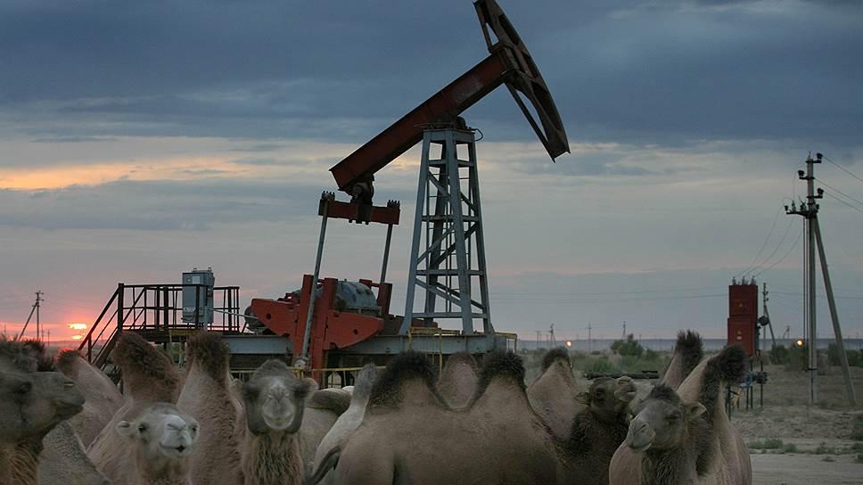 У Александра Лукашенко закачалась «Дружба» / Белоруссия надеется на поставки нефти из Казахстана