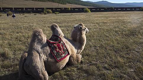 Долги УБЖД двинулись к списанию // Россия и Монголия обсуждают кредиты Улан-Баторской железной дороги