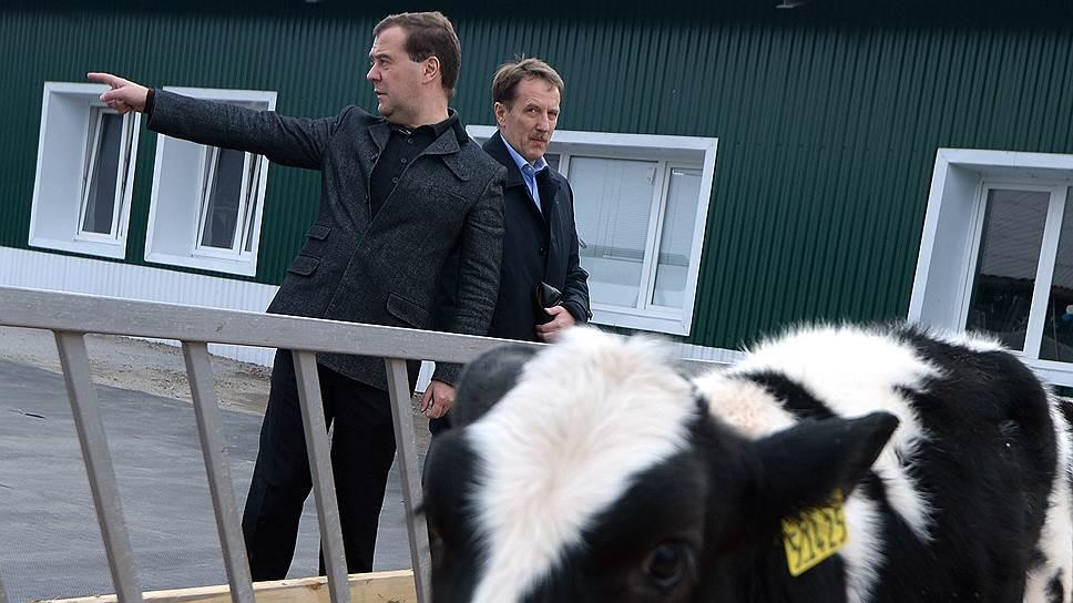 Правительство Дмитрия Медведева настаивает на оценке эффективности мероприятий пилотных госпрограмм, в том числе — программы АПК, которую курирует вице-премьер Алексей Гордеев