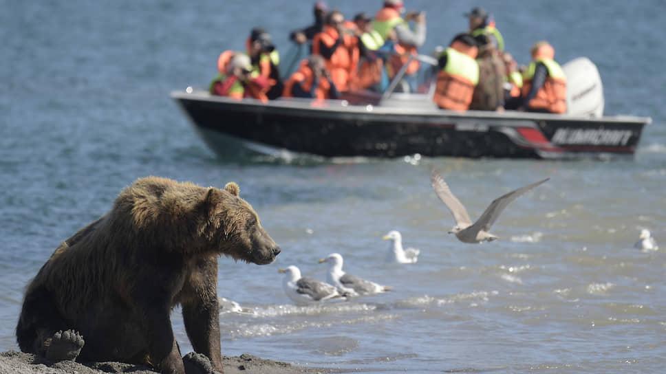 Экологический туризм, опасаются скептики, чреват дополнительной нагрузкой на экосистему
