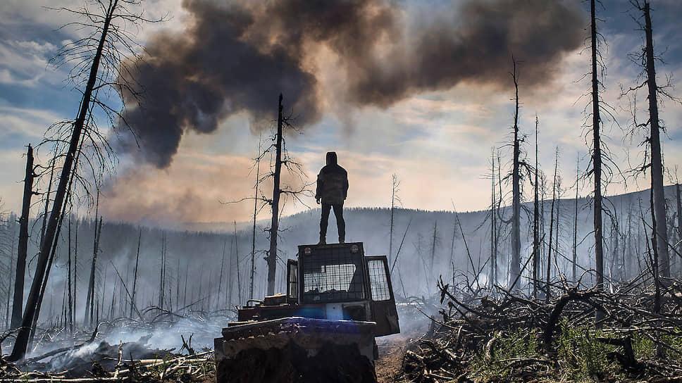 Неутушительный прогноз / В ликвидации сибирских лесных пожаров остается надеяться только на дожди