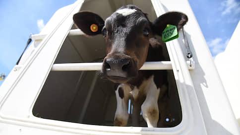 Конкуренты померяются стейками // Производители говядины расширяют ресторанный бизнес