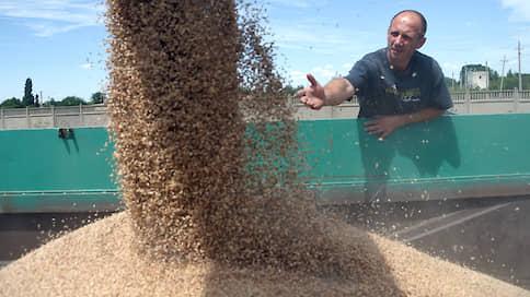 Урожай подтопило // Зерновые попали в чрезвычайную ситуацию