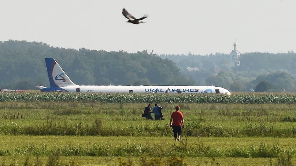 Как пилоты совершили аварийную посадку самолета в кукурузном поле