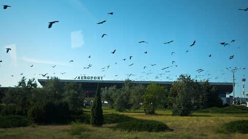 Россия хочет приземлиться в аэропорту Кишинева // Совбез Молдавии требует вывода актива из концессии