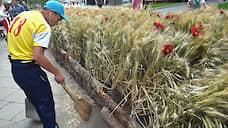 Вьетнам не принимает зерно