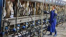 Молоко пойдет на заменители  / Партнер РФПИ по заводу детских смесей хочет сам выпускать сырье