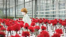 Цветы добра  / На экранах триллер Джессики Хауснер «Малыш Джо»