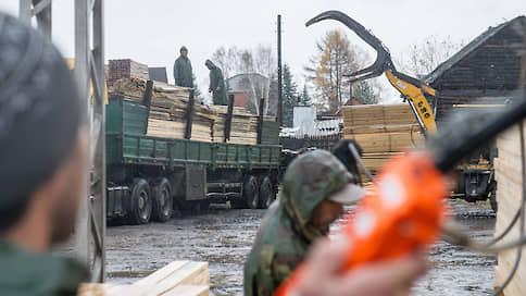 Дальний Восток ставит вопрос бревном  / Отрасль просит снижения экспортных пошлин