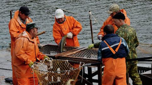 Экспортеры не соблюли все уловности  / НДС не вернулся к рыбопромышленникам из исключительной экономической зоны