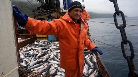 Рыбу делят по науке  / Для исследований ресурса хотят создать новый вид квот