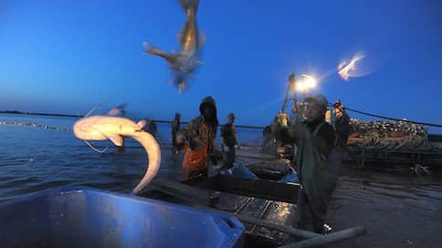 Рыбе мешают речные пути  / Участки на судоходных реках оказались под запретом
