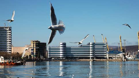 НМТП ограничится Новороссийском  / Контролирующий акционер не намерен инвестировать в развитие других портов группы
