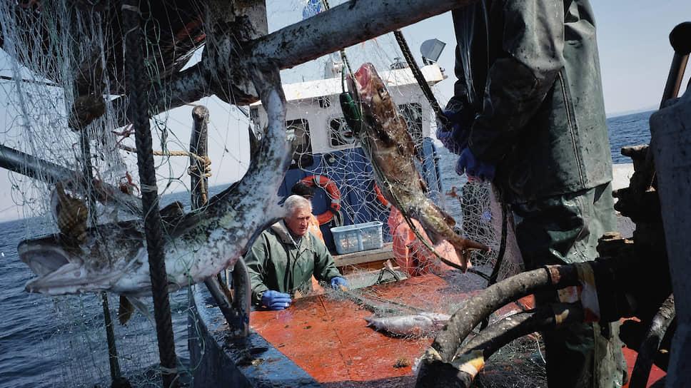 Как из-за коронавируса страдает рыболопромышленная отрасль
