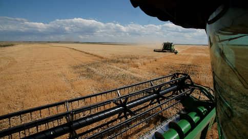 Цену нового урожая смыло дождем  / Российская пшеница дешевеет перед стартом нового сезона