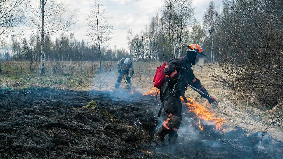 Как в России пересчитывали природные пожары