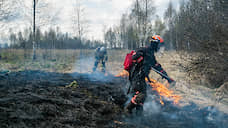 У «Гринписа» все выгорело  / Эксперты впервые пересчитали природные пожары в России