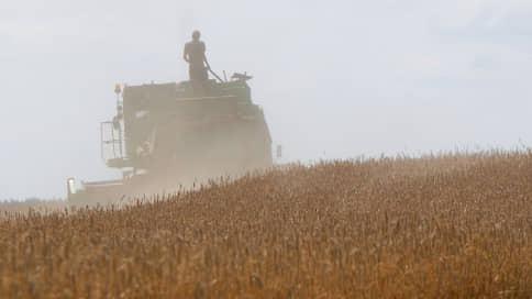 Инвесторы дозрели до пшеницы  / Производитель сыров вышел на рынок зерна