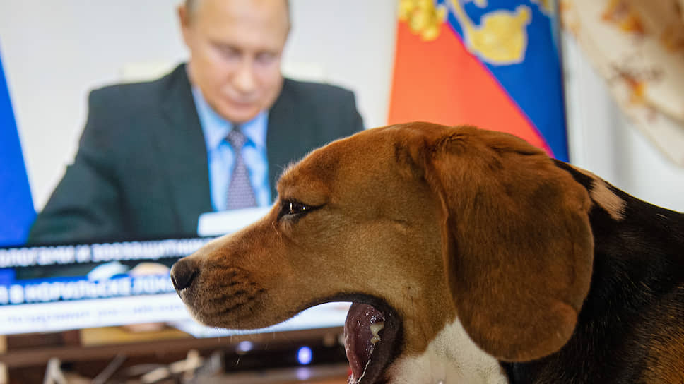 Эко логичные выводы / Владимир Путин выслушал виновников торжества нефтеразлива
