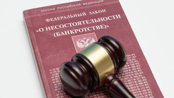 внесудебные процедуры несостоятельности банкротства
