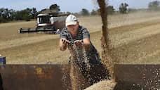 Экспорт пшеницы сжался