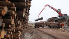 Растить нельзя рубить  / Минприроды, Минпромторг и Рослесхоз не могут договориться о планах развития лесной отрасли