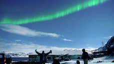 В Арктике замечены резиденты
