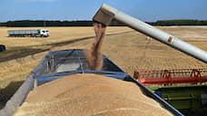 Зерно ждет приглашения  / Экспортеры хотели бы разделить оптимизм планов на урожай