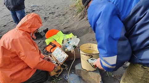 Москва попробует камчатскую воду  / Дальний Восток направил в столицу образцы с загрязненного пляжа