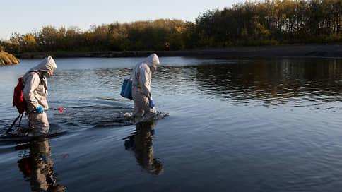 Фенола ля комедия  / Пока никто не может понять причин экологического бедствия на Камчатке