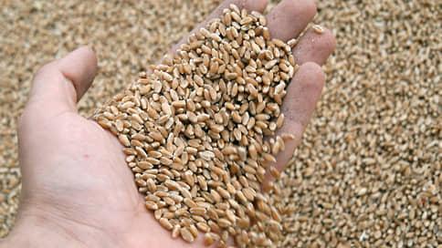 Пшеница гнется под пошлиной // Экспортеры предупредили правительство о рисках новых ограничений