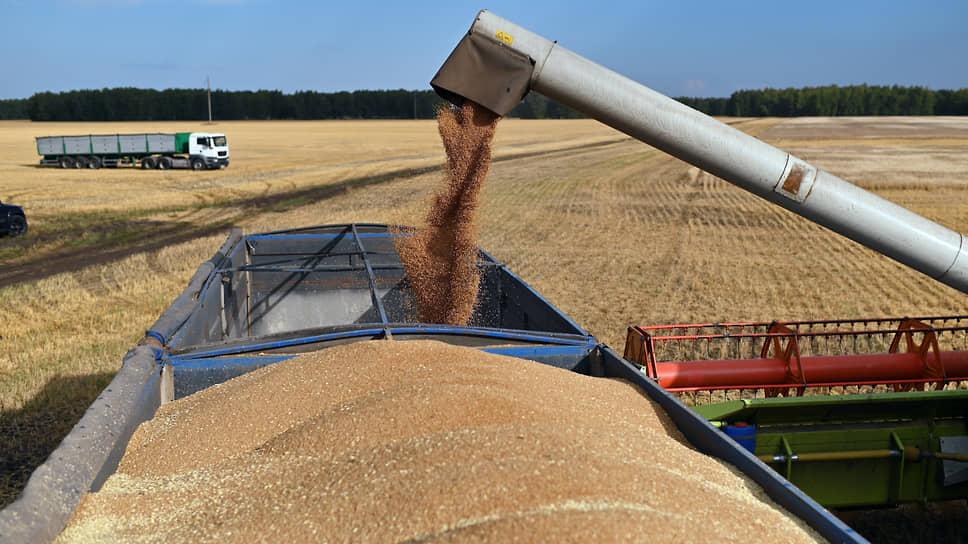Пшеница на замке