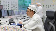 Курской АЭС-2 включают господдержку