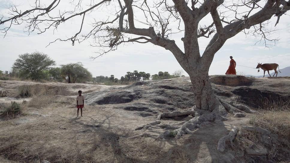 Суровые индийские реалии, показанные в фильме «Камешки», не помешали жюри залюбоваться его гуманизмом