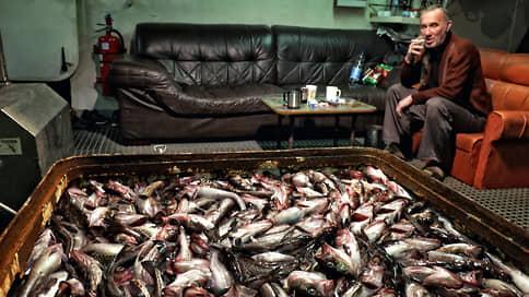 Новая минтайность // Поставки рыбы остановились из-за опасений обвала цен
