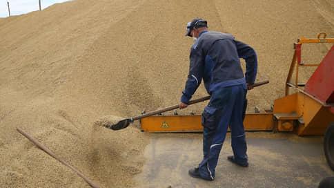 Зерно испытывает перегрузию  / Россия нарастила экспорт в неожиданном направлении